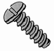 Pan Slotted B Self Tapping Screw