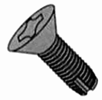 Flat Phillips Stainless Thread Cutting Type F Screw